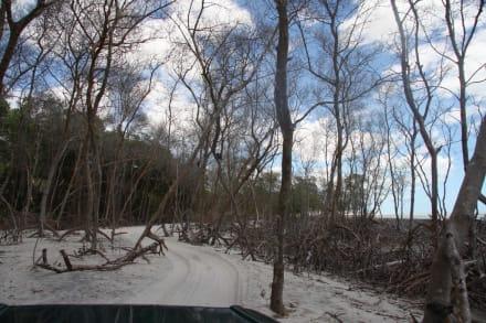Sonstiges Landschaftmotiv - Buggytour