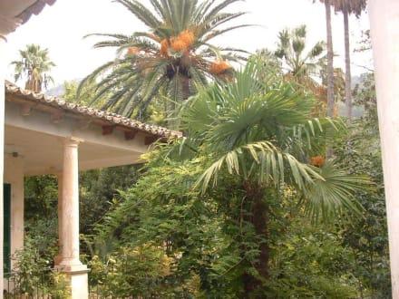 Jardines d`Alfabia - Gärten von Alfabia