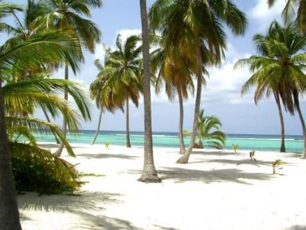 Ausflug zur Insel Saona - Isla Saona