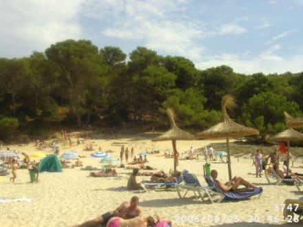 Strand Playa S'Amarador - Strand Playa S'Amarador