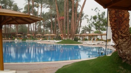 Pool - Mercure Luxor Karnak