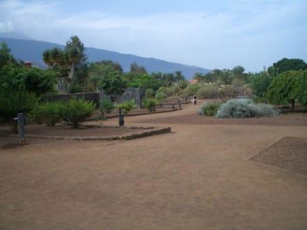 Taoro Park nach Umbau - Park Taoro
