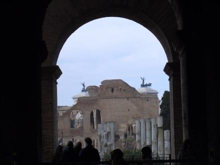 Blick aus dem Kolosseum auf das Forum Romanum - Kolosseum