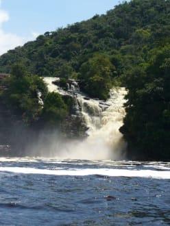 Wasserfall in Canaima - Wasserfälle von Canaima - Salto Sapo