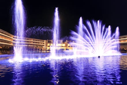 Water Show -