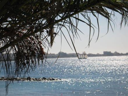 Blick auf das Meer - Strand El Duque