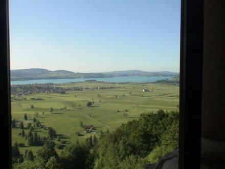 Ausblick aus dem Fenster des Schlosses - Schloss Neuschwanstein