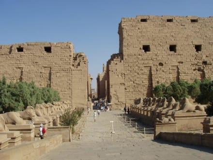 Die Allee - Amonstempel Karnak