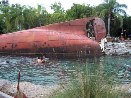 "das ""Haibecken"" - Disney's Typhoon Lagoon"