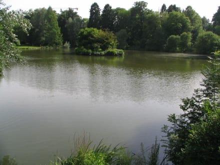 See im Schloßgarten - Schloß Homburg