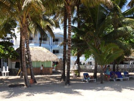 Öffentliche Strandbar des Hotels - Hotel Tropical Casa Laguna & Beach Club