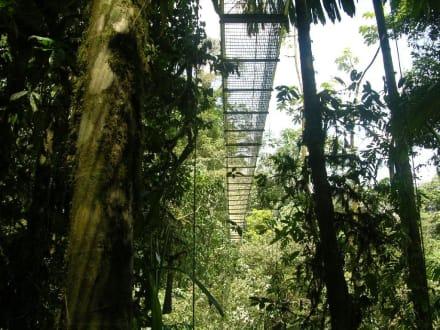 Hängebrücke, Vulkan Arenal - Vulkan Arenal