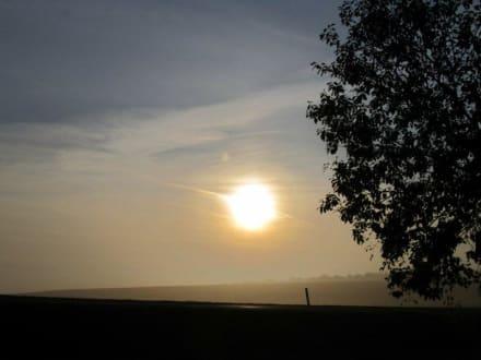 Sonnenaufgang am Wildpark - Wildpark Bad Mergentheim