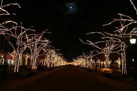Weihnachten - Unter den Linden