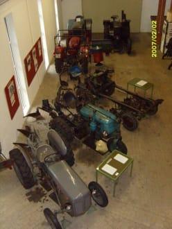 Viele Trecker! - Landwirtschaftsmuseum Meldorf
