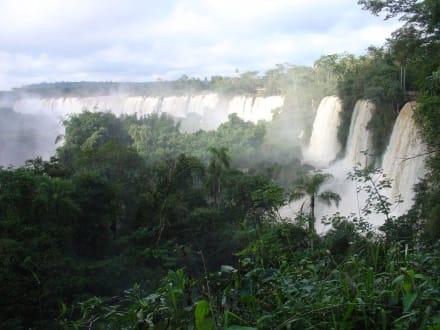 Wasserfälle von Iguacu - Wasserfälle von Iguazu