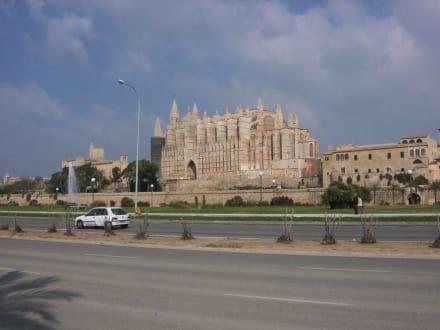 Ausflug nach Palma de Mallorca - Kathedrale La Seu