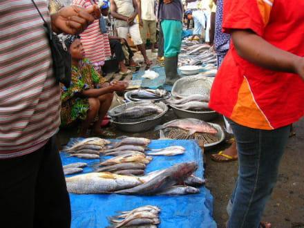 Fisch - Einkauf - Fischmarkt
