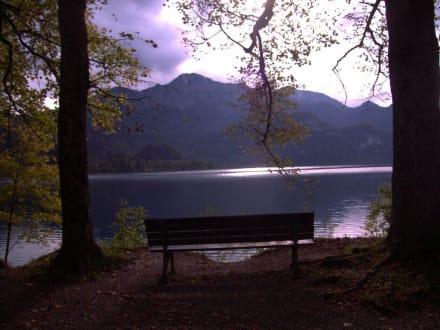 Kochel am See - Kochelsee