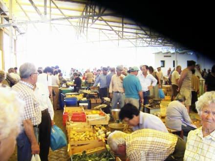Bauernmarkt in Lagos - Markt