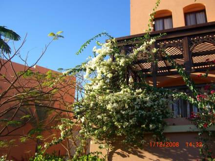 Exterior view -