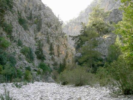in der Schlucht von Beldibi - Schlucht von Göynük / Göynük Canyon Park