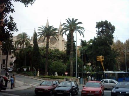 Kathedrale vom Palma - Kathedrale La Seu