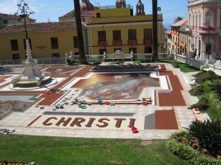 Corpus Christi - Corpus Christi