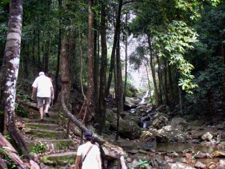 Der Weg zum Wasserfall - Temurun Wasserfall