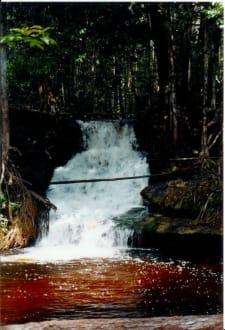Badevergnügen im Urwald - Cachoeira Orquídea
