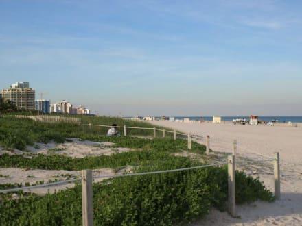 South Beach - South Beach