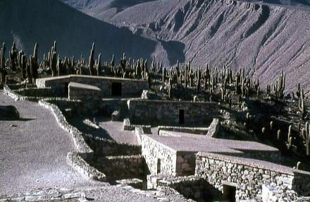Die Inka-Festung (Pucara) - Inka-Festung (Pucara) bei Tilcara