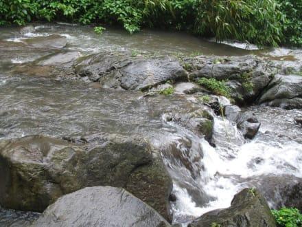 Starke Strömung. - Git Git Wasserfall