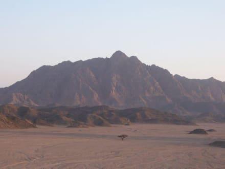 Wüsre - Wüstentour Marsa Alam