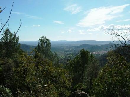 Auf dem Weg zum Gipfel - Castell d'Alaro