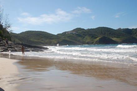 Praia Brava - Praia Brava (Brava Beach)