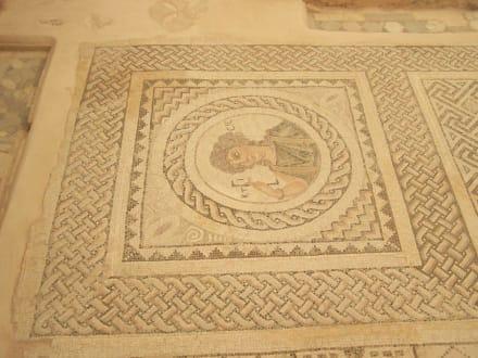 Sonstige Sehenswürdigkeit - Antike Königsstadt Kourion