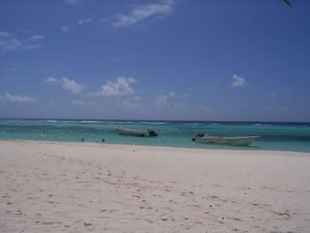 RH-Tours - RH Tours Ausflüge Punta Cana