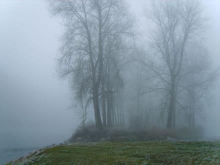 Nebel am Mittag - Plattling