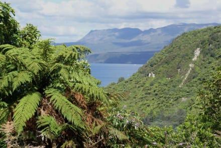 Lake Tarawera - Lake Tarawera
