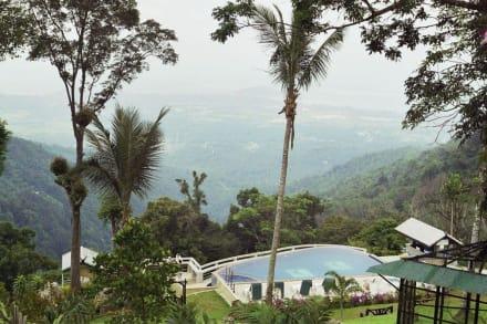 Pool mit Aussicht - Paradise Park Farm