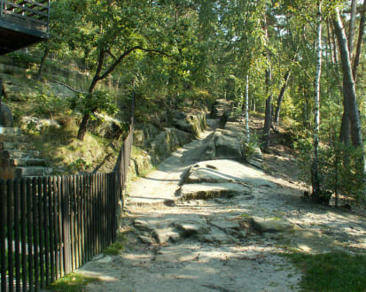Uferweg am Machasee - See von Doksy / Máchasee