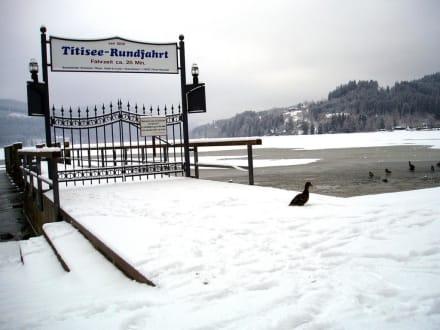 Der Titisee im Winter 2003/2004 - Titisee