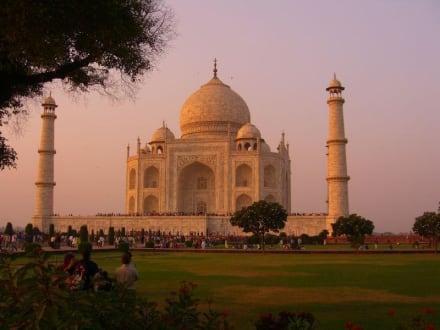 Taj Mahal, Abendsstimmung - Taj Mahal