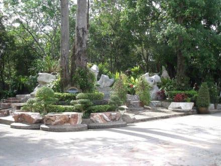 Gepflegt angelegte Anlage - The Million Years Stone Park & Crocodile Farm