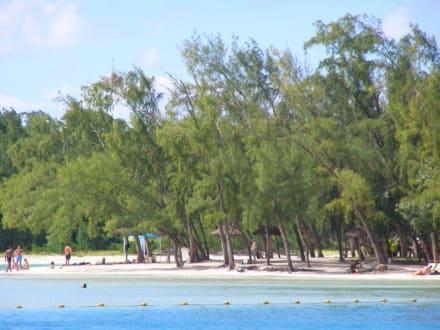 Menschemassen a la Ballermann - Île aux Cerfs