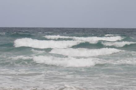 Das Meer an der Westküste - Westküste