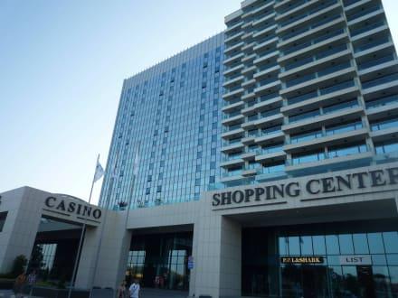 Palace ace casino