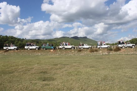Jeep - Safari - Efe's Ausflüge