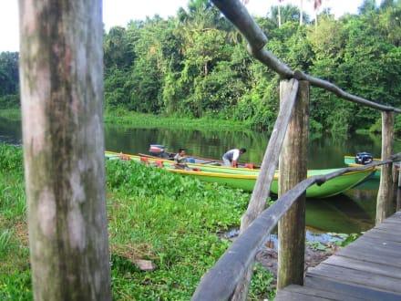 Dschungel Camp. - Boral Camp